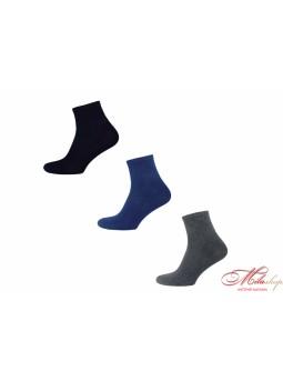 Плотные мужские носки Taso В 407